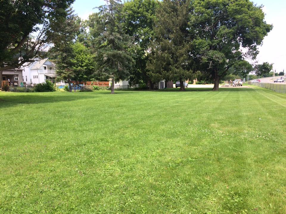 Just before mowing lawn in Hornell NY