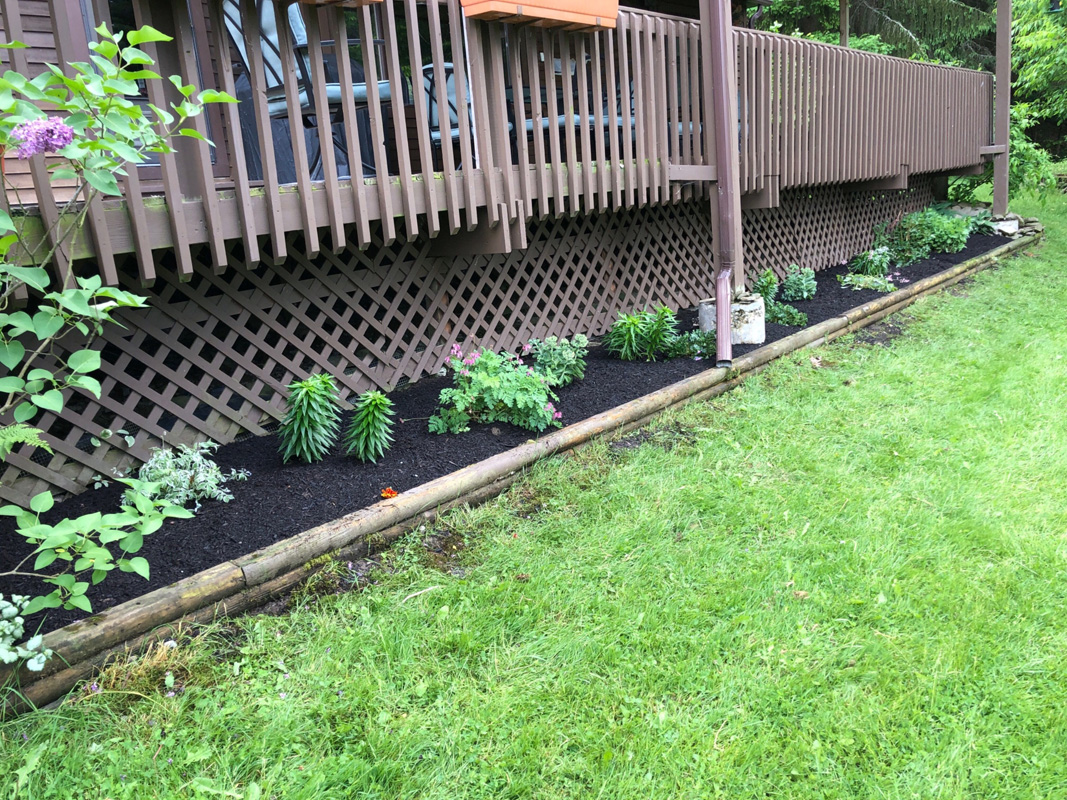 Timber landscape bed after weeding and mulching